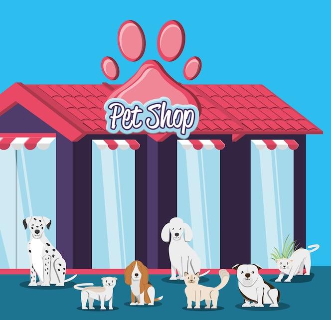 Tienda de mascotas elementos veterinarios