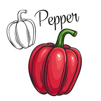 Tienda o mercado de icono de dibujo de pimienta