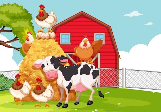 Una tierra de cultivo con animales.