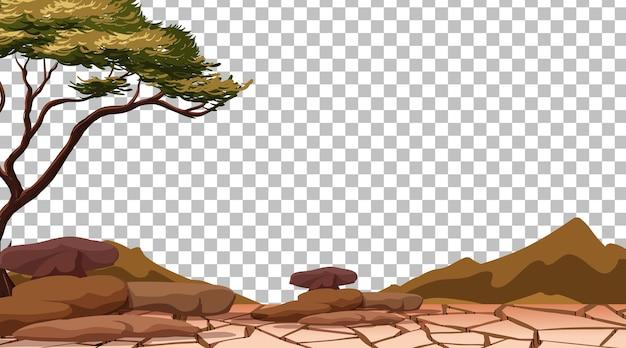 Tierra seca agrietada en transparente