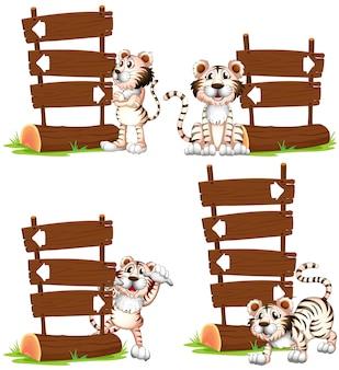 Tigre blanco con signos de madera.