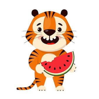 Tigre de dibujos animados lindo comiendo una rebanada de sandía