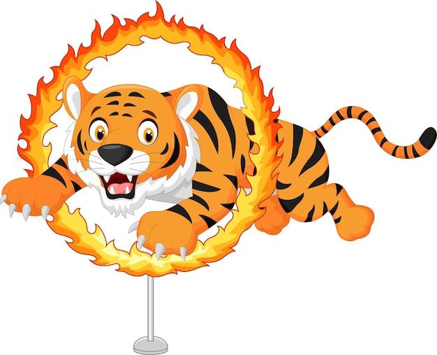 Tigre de dibujos animados salta a través del anillo de fuego