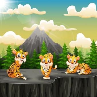 Tigre grupo de dibujos animados disfrutando en la montaña un acantilado