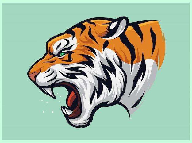 Tigre rugiente enojado, panthera tigris