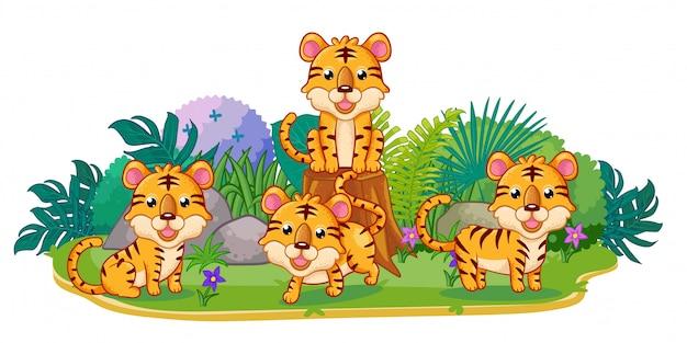 Tigres juegan juntos en el jardín.