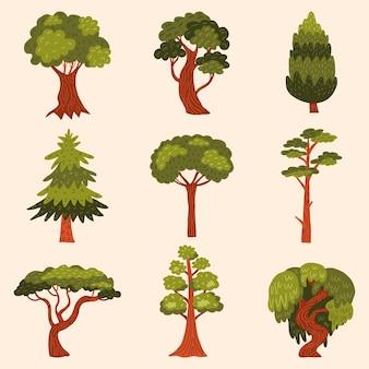 Tipo de árboles dibujados a mano