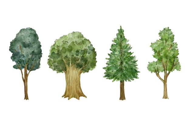 Tipo de árboles de estilo acuarela