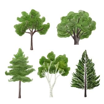 Tipo de estilo acuarela de colección de árboles.