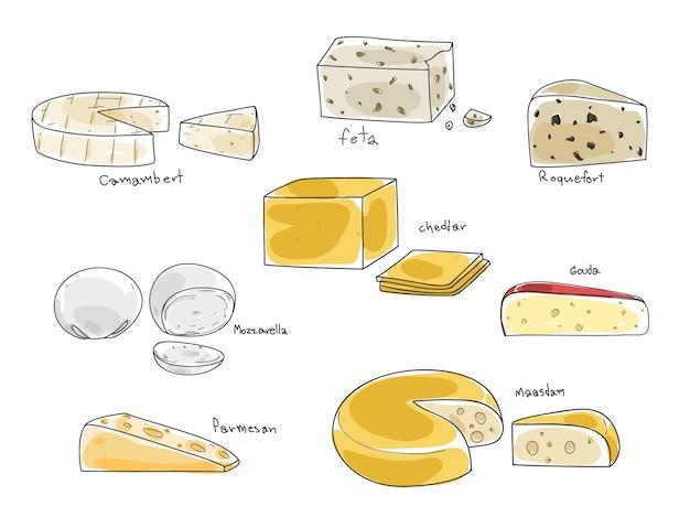 Tipo popular de queso conjunto de vectores dibujados a mano