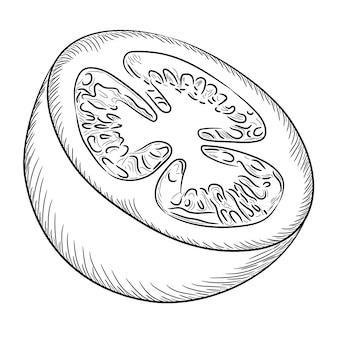 Tomate cortado en boceto de medio núcleo dibujar desde el contorno líneas de pincel negro de diferente grosor