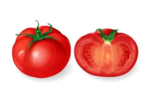 Tomate realista, vegetales frescos redondos rojos enteros y mitad cortada.