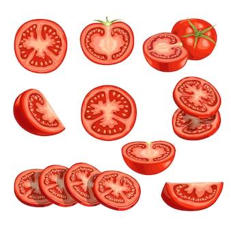 Tomates frescos de dibujos animados. verduras rojas adentro. corta tomates frescos de granja en rodajas, individuales y grupales. ilustraciones sobre fondo blanco.