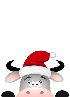 Toro gris divertido sobre fondo blanco. navidad