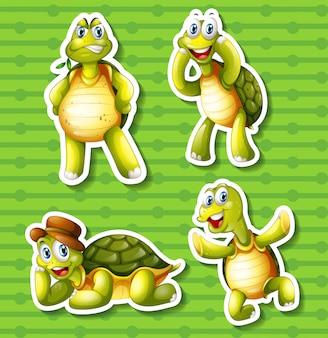 Tortuga en cuatro poses diferentes