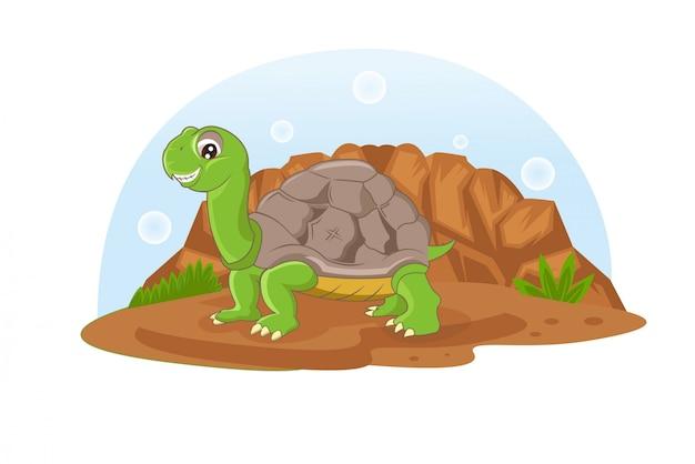 Tortuga divertida caminando en las rocas