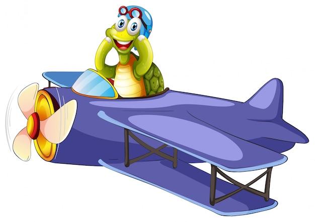 Tortuga montando aeroplano vintage