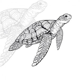 Tortuga, vector, ilustración
