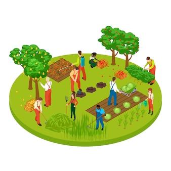 Trabajadores de jardinería, árboles frutales y plantas ilustración isométrica