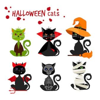Trajes de disfraces de moda de gato negro de halloween