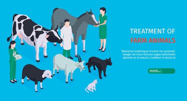 Tratamiento de banner web horizontal de animales de granja con veterinarios que cuidan a mascotas isométricas