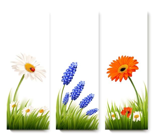 Tres banderas de flores.