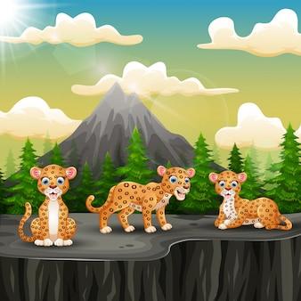 Tres dibujos animados de leopardo disfrutando en la montaña un acantilado