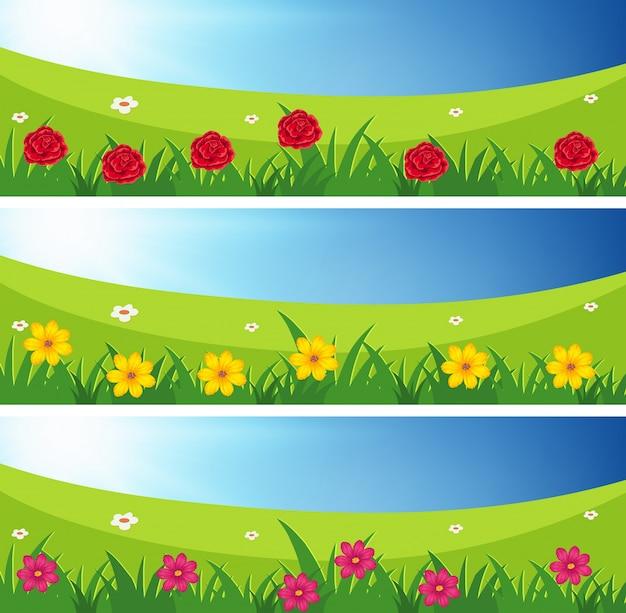 Tres escenas de campos con flores