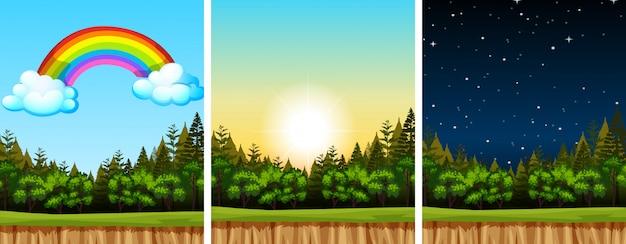 Tres escenas de la naturaleza con diferentes momentos.
