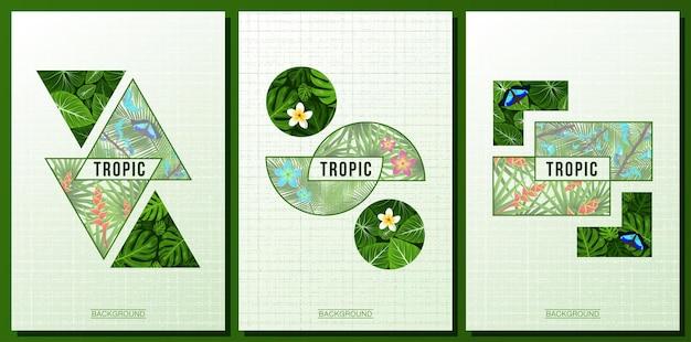 Tres modernas hojas de selva tropical cartel plumeria flores tropicales