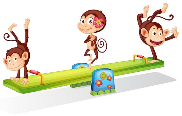 Tres monos juguetones jugando con el balancín