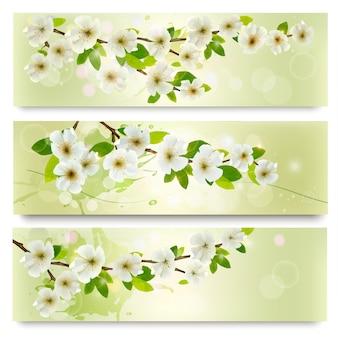 Tres pancartas de primavera con brunch de árbol floreciente con flores de primavera.