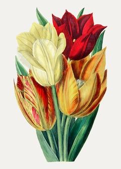 Tulipanes en colores cálidos.