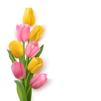 Tulipanes sobre un fondo blanco. flores de diferentes colores en la esquina izquierda.