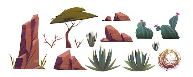 Tumbleweed, cactus y rocas del desierto de arena en áfrica