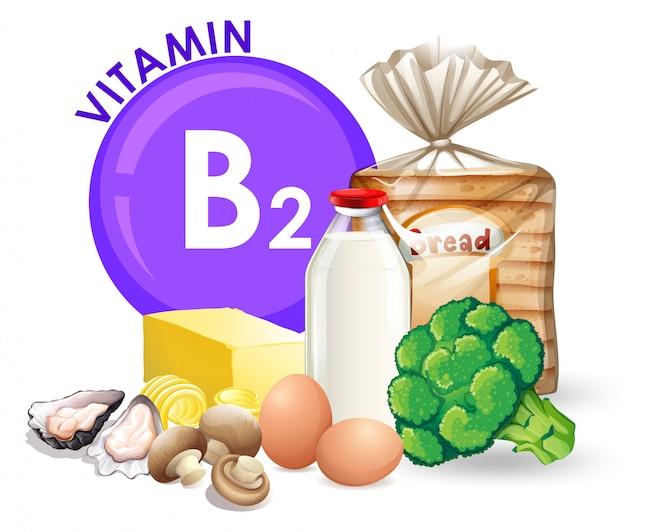 Un conjunto de alimentos con vitamina b2