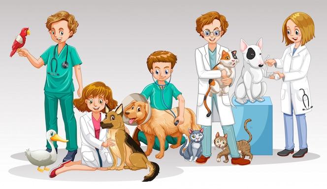 Un equipo de veterinario en el fondo blanco