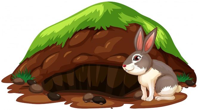 Un lindo conejo saliéndose del agujero