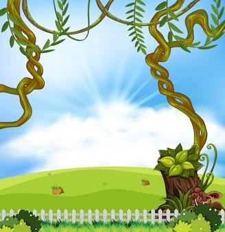 Un paisaje de naturaleza de verano