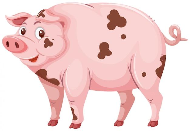 Un sucio cerdo de barro