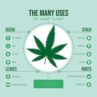 Usos de la infografía de la planta de cáñamo.