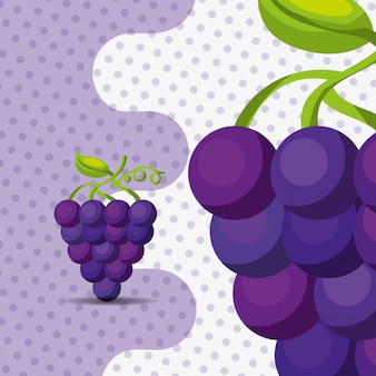 Uvas de racimo natural de fruta fresca sobre fondo de puntos