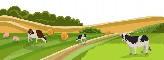 Vaca y cerdo pastan en campo de pradera de hierba verde