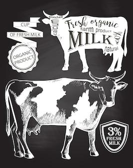 Vaca. dibujado a mano. dibujo de tiza en la ilustración de vector de pizarra