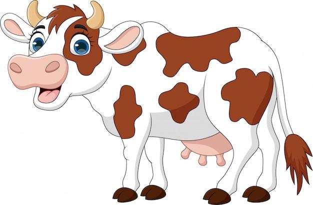 Vaca feliz de dibujos animados aislado sobre fondo blanco