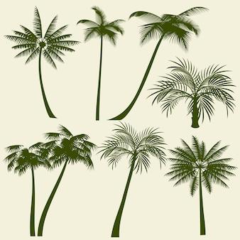 Vacaciones de verano palmera vector siluetas