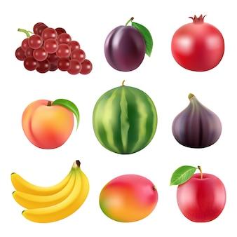 Varias frutas realistas