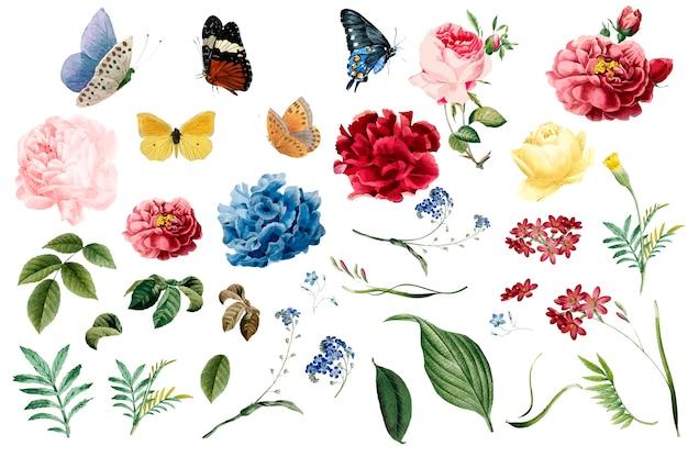 Varias ilustraciones románticas de flores y hojas