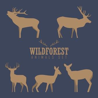 Varias siluetas de ciervos aislados sobre fondo blanco, ciervos de navidad