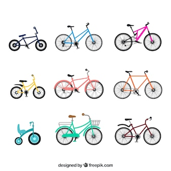 Variedad colorida de bicicletas básicas